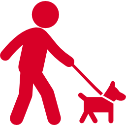 walking-with-dog